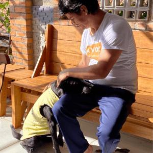 Vai Paulo – Aventuras de um iniciantes – Roupa (colete) Pet com molde grátis